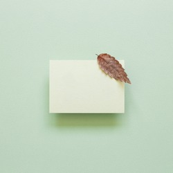Blank memo pad with dry autumn leaves on green background. top view, copy space