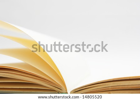 Blank pages of open book close-up