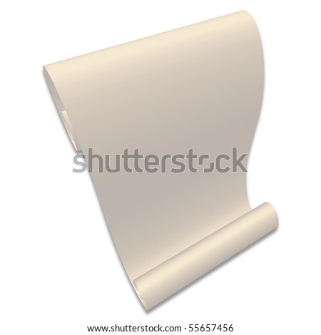 blank paper scroll. stock photo : Blank Paper