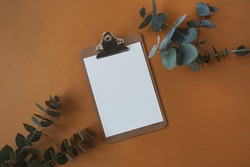 Blank paper sheet clipboard pad with mockup copy space, eucalyptus branch on deep orange background. Flat lay, top view minimal business template