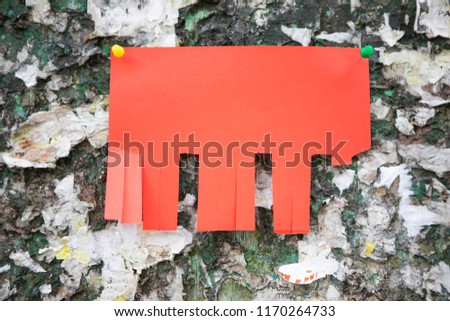 free photos tear off paper notice on the wall avopix com