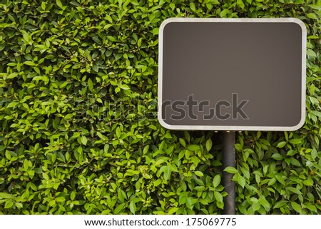 Blank Sign on green leaves wall