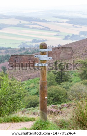 Blank Wooden signpost pointing in opposite directions #1477032464