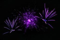 blasting fireworks in the sky in purple color diwali festival happy new year celebration