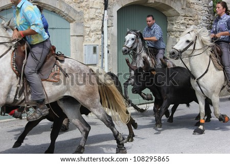 BLAUZAC, FRANCE - JUL 15: Herd of horses runs from the bulls in a street of Blauzac during village traditional summer festival on July 15, 2012 in Blauzac, Gard France. A festival called abrivado.