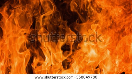 Blaze fire flame background and textured #558049780