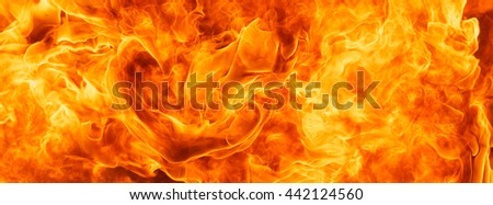 blaze fire flame for banner background #442124560