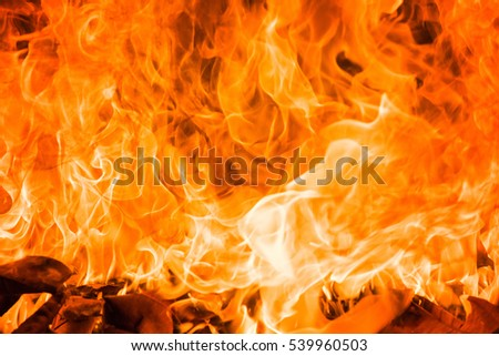 Blazing fire flame background #539960503
