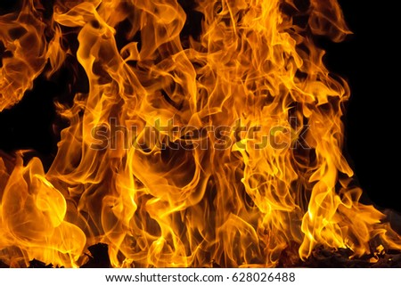 Blazing fire flame background and textured #628026488