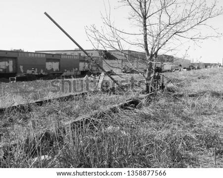 Bleak and Decayed Railroad Yard