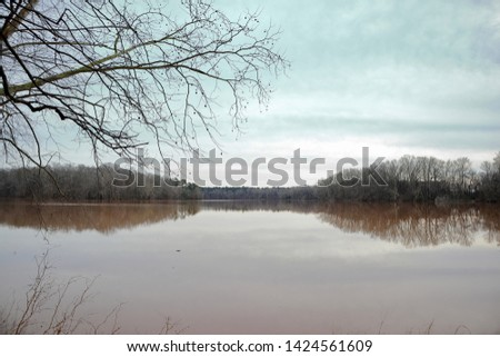 Bleak winter scene with a lake, hills, and an overhanging branch