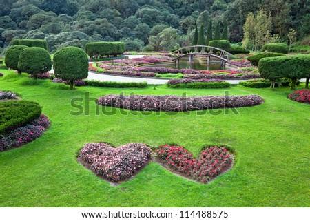 Blend of natural Garden arrangement.