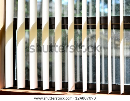 Blinds on the window
