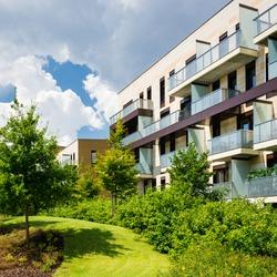 Block of flats in beautiful green public park