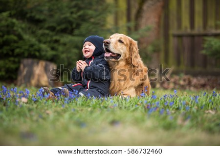 Blond big dog and baby boy in spring having fun
