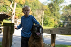 Blond boy with a large brown dog, English Mastiff standing on a bridge in a park. Both look worried and careful. Warm sunny day. Medium shot.