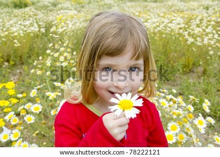 blond little girl smeling daisy spring flower meadow field