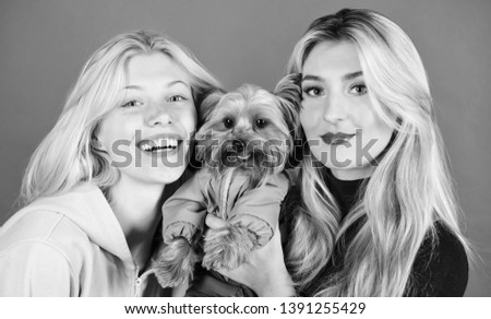 Blonde girls adore little cute dog. Women hug yorkshire terrier. Yorkshire terrier is very affectionate loving dog that craves attention. Cute pet dog. Yorkshire Terrier breed loves socialization. #1391255429