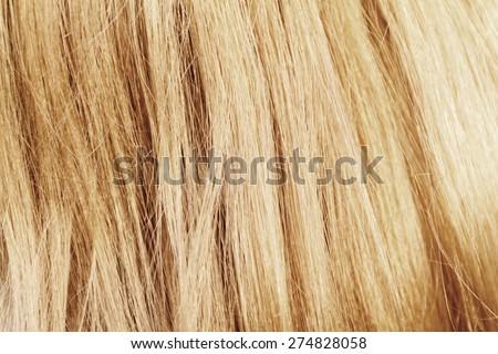 Blonde hair. Blond hair texture - closeup photo
