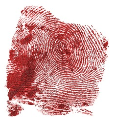 Bloody fingerprint isolated on a white background. Red fingerprint. Criminal style.
