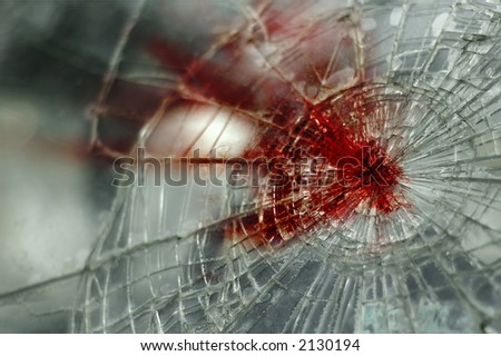 Bloody Windshield (the same windshield is also in my gallery without blood)