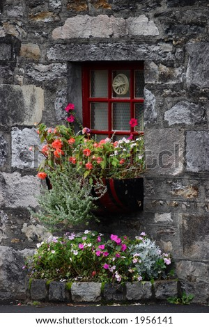 blooming flowerbox at window