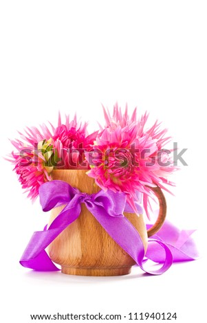 blooming pink dahlias in a vase on a white background