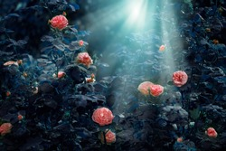 Blooming pink rose flowers in fabulous night mystical garden on mysterious fairy tale spring or summer floral background with moon light and rays, fantasy amazing nature dreamy landscape