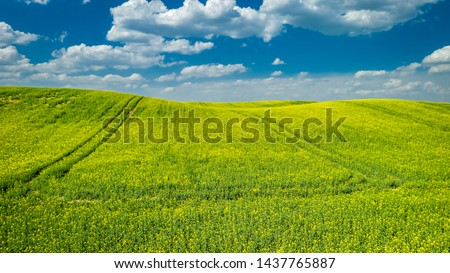 Blooming rape fields in sunny day, aerial view of Poland #1437765887