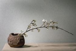 Blossom cherry branches in craft clay vase on grey table cloth. Spring interior decorations.