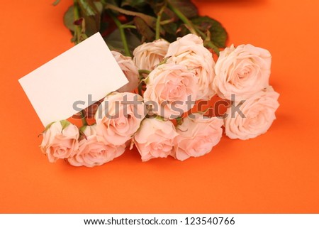 blossom creamy roses for decoration/Spring bouquet of fresh flowers on Holiday theme