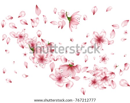 Blossom flowers, buds and petals flying image background. Spring isolated elements on white background. Bloom parts confetti - pink petals and flowers flying floral windy pattern.