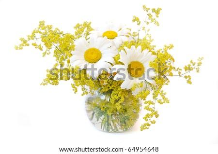 blossom nature - Shutterstock ID 64954648