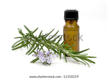 Blossoming rosemary branch with bottle of essential oil