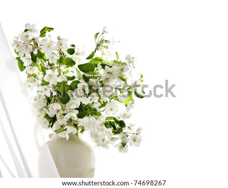 Blossoming spring branches in jug