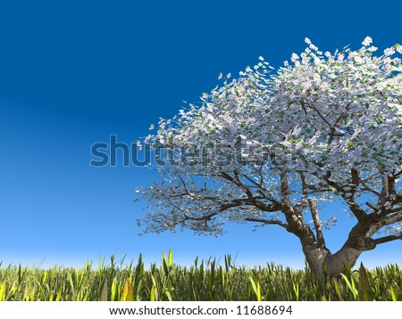 Blossoming tree on a meadow