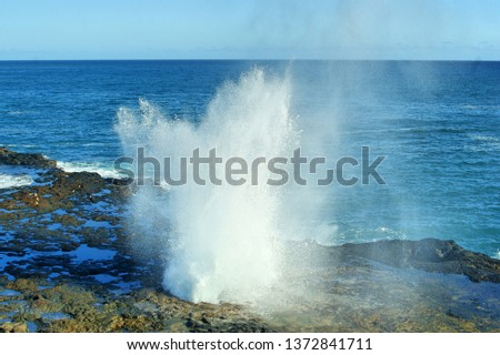 blowhole surf spray #1372841711