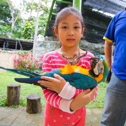 Blue and Gold Macaw little girl