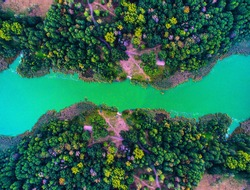 blue and green river in the forest