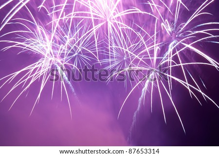 Blue and purple colorful fireworks on the black sky background. Holiday celebration.