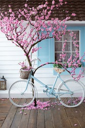 blue and white bike on porch in spring with a blooming tree