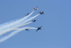 Blue angels F18 hornet precision flying team