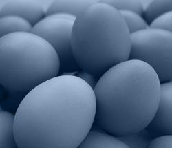 blue background,eggs background