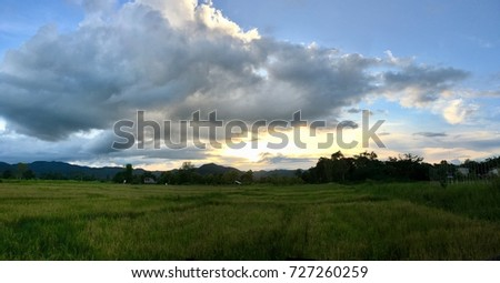 Blue background with cloud and meadow #727260259