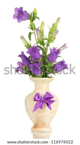 Blue bell flowers in vase isolated on white ez canvas blue bell flowers in vase isolated on white mightylinksfo