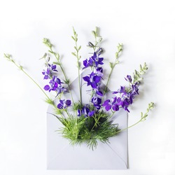 Blue bells flowers in grey envelope on the white background.