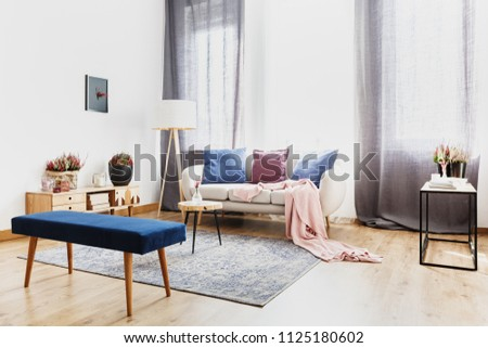 Blue bench in modern living room interior with pink blanket on settee under window with grey curtains #1125180602