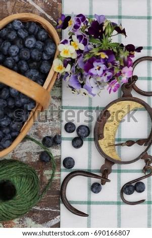 blue berries in old vintage...