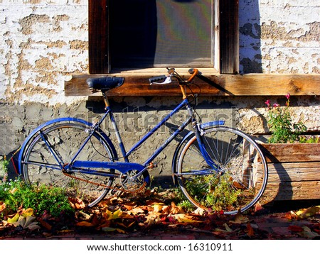 Blue bicycle in Harmony, California