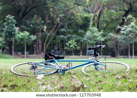 Blue bicycle was laid on the green grass